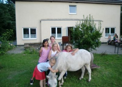 Pony schmusen